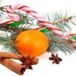 Christmas composition with mandarin and Candy Cane — Stock Photo