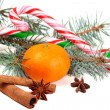 Christmas composition with mandarin and Candy Cane — Stock Photo #17461451