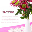 Stock Photo: Fresh chrysanthemums in vase on white background