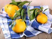Orange fruits with leaves — Stock Photo