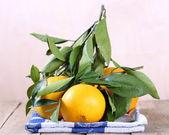 Frutas laranja com folhas — Foto Stock