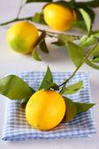 Citrons frais avec des feuilles — Photo