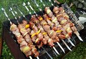 шашлык (шашлык) на пикник — Стоковое фото