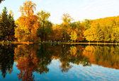 Sonbahar manzara — Stok fotoğraf