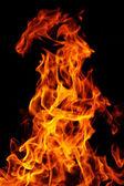 Fire on black background — Stock Photo