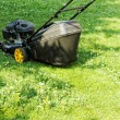 Lawnmower — Stock Photo #29486643