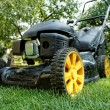 Lawnmower — Foto de Stock