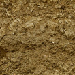 Stock Photo: Mud texture