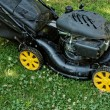 Lawnmower — Stock Photo #39688843