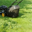 Lawnmower — Stock Photo #39939511