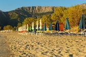 Golden beach — Stock Photo