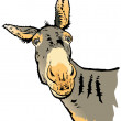 Stock Photo: Illustration of donkey