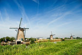 Typical windmills in Holland — Stock Photo