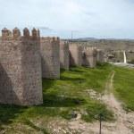Spain Avila City-fortress — Stock Photo #47309527