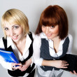 Two woman with folder and laptop — Stock Photo