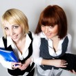 Two woman with folder and laptop — Stock Photo #20115247