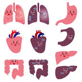 Character of human organs — Stock Vector