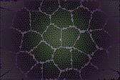 Microscope leaf3 — Stock Photo