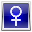 Blue shiny icon — Stock Photo