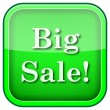 Green square shiny icon — Foto Stock