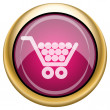 Magenta glossy icon — Stock Photo #29539519