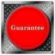 Guarantee metallic icon — Foto Stock