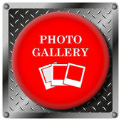 Icône métallique de galerie photo — Photo