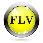 FLV icon — Stockfoto