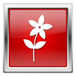 Flower  icon — Photo