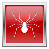 Spider icon — Stock Photo