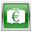 Euro bag icon — Stock Photo