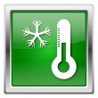 Snowflake with thermometer icon — Stockfoto