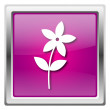 Flower  icon — Stock Photo