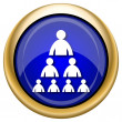 Organizational chart with people icon — Foto de stock #33337331