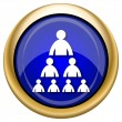 Organizational chart with people icon — Foto Stock #33337331