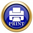 Printer with word PRINT icon — Foto de stock #33337589