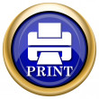 图库照片: Printer with word PRINT icon