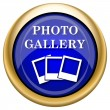 Photo gallery icon — Foto de stock #33337699