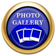 Photo gallery icon — Stock fotografie #33337699