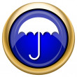Umbrella icon — Stock Photo