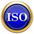 ISO icon — Foto Stock #33338441