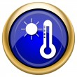 Sun and thermometer icon — Stock fotografie #33338747