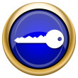 Key icon — Stock fotografie #33339151
