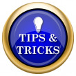 图库照片: Tips and tricks icon