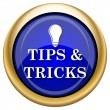 Tips and tricks icon — Stock fotografie #33339283