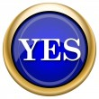 Foto de Stock  : Yes icon
