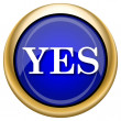 Stockfoto: Yes icon