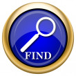Foto de Stock  : Find icon