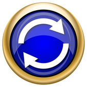 Reload two arrows icon — 图库照片