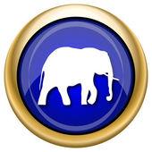 Elephant icon — Стоковое фото